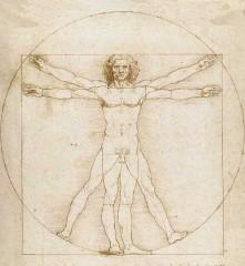 darwin,evoluzionismo,disegno intelligente,universo